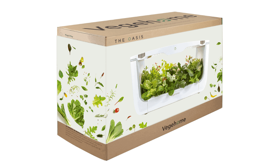 Oasis Vegehome Box 1