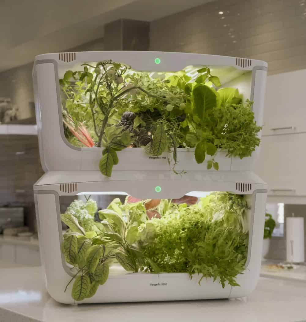 Stacked Vegehome x 2